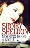 Sidney Sheldon Morning Noon and Night