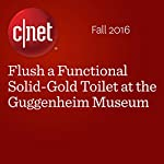Flush a Functional Solid-Gold Toilet at the Guggenheim Museum | Amanda Kooser