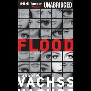 Flood Audiobook