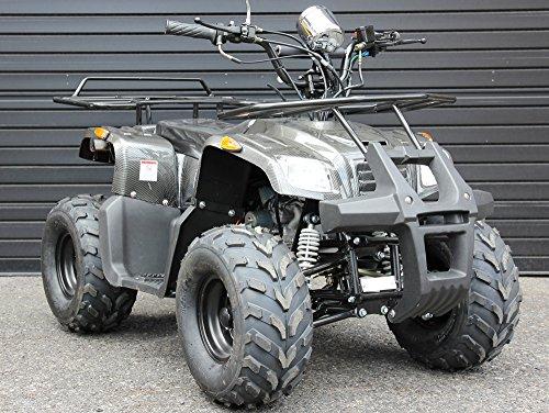 IceBear(アイスベアー) 四輪バギー ATV 50cc セミオートマ前進3速バック付 ミニカー登録 公道走行可 カーボン調 HL50C
