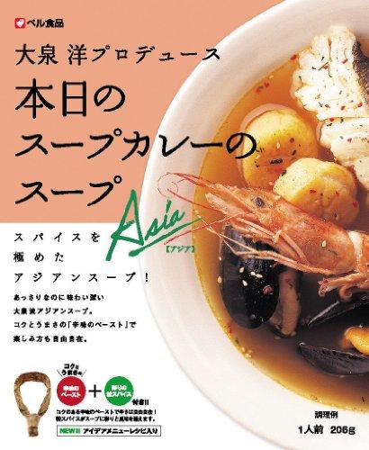 本日のスープカレーのスープ アジア206g