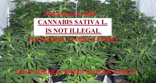 CANNABIS SATIVAL L. IS NOT ILLEGAL (CANNABIS SATIVA L. IS NOT ILLEGAL)