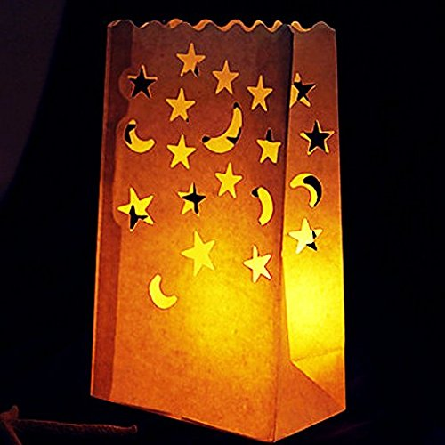 Go Luminary Bags - 20 Gorgeous Flame Resistant Lighting Bag with Star and Moon Design | Extremely Safe Durable Reusable Cotton | Perfect Decor for Wedding Reception Party | 326.3 (Indian Paint Dvd compare prices)