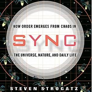 Sync Audiobook