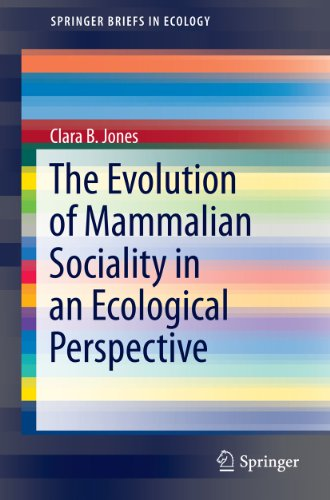 social ecological perspective
