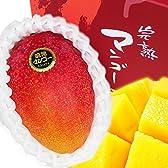 【 産地直送 】 熊本県産 高級 完熟 マンゴー 2玉化粧箱入り ( 約1kg前後 ) 贈答用におすすめです。