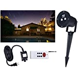 Pepnice Red and Green Firefly Laser Light Sparkling Landscape Projector with Remote Control, Black