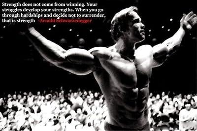 Arnold Schwarzenegger Bodybuilding Motivational Poster 24x36'' Gym Decoration13