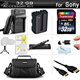 32GB Accessories Kit For Sony Alpha SLT-A58K, a58, SLT-A99V, SLT-A65, SLT-A77, SLT-A57 DSLR Camera Includes 32GB High Speed SD Memory Card + Extended Replacement (2000 maH) NP-FM500H Battery + AC/DC Travel Charger + Mini HDMI Cable + Case + More