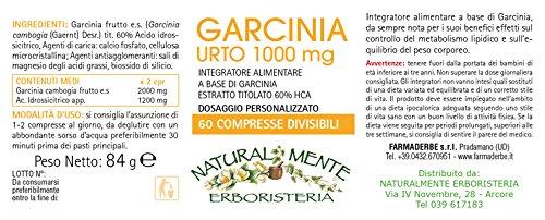 Garcinia Urto 1000mg