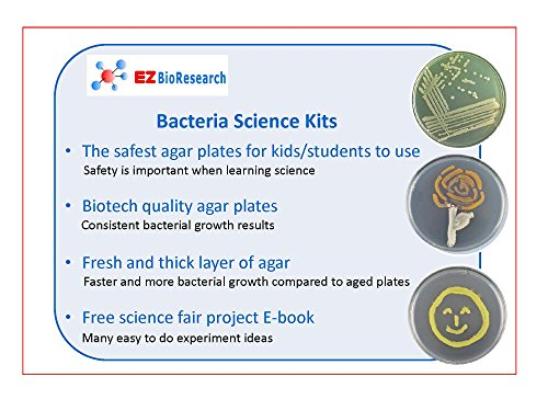 microbiology science fair projects Here are some great ideas for biology science fair projects including projects related to animals, plants and the human body.