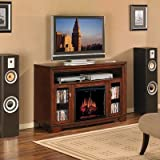 Price Comparisons of Palisades Wall Mount Electric Fireplace & TV Stand in Empire Cherry with 23EF025GRA Electric Insert