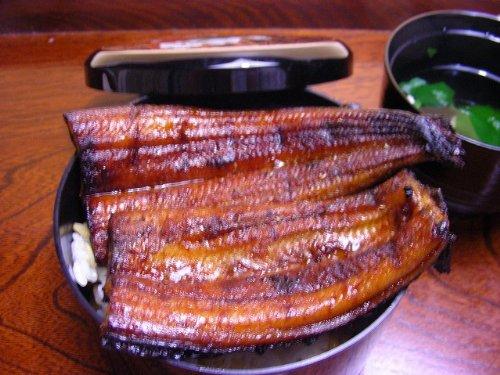 国産 ( 鹿児島県 ) うなぎ長蒲焼140g以上×2尾