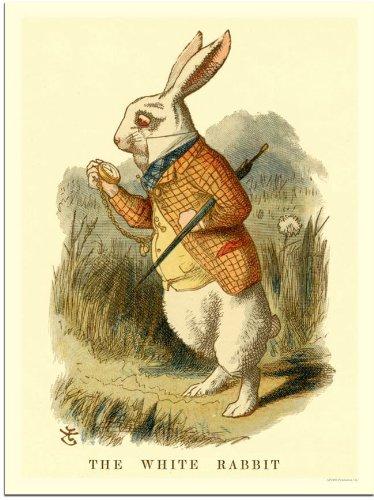 Alice In Wonderland, The White Rabbit (30x40cm Art Print)