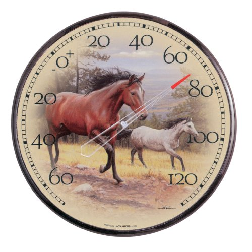 Chaney Instruments Acu-Rite 01839 12.5-inch Horses Thermometer