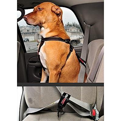 EzyDog Seat Belt Restraint for Dogs