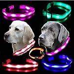 Leuchthalsband LED Hundehalsband Leuc...
