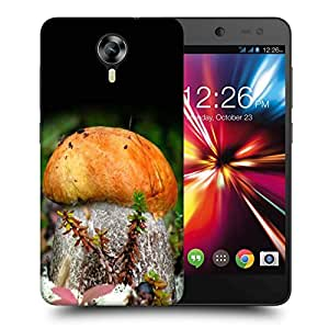 Snoogg Orange Mushroom Printed Protective Phone Back Case Cover For Micromax Canvas Nitro 4G