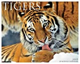 Tigers 2015 Wall Calendar