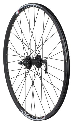 Avenir Joytec/Weinmann 36H QR Front Wheel, Disc Brake Only (Black, 26-Inch x 26mm)