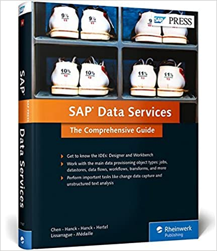 SAP Data Services: The Comprehensive Guide