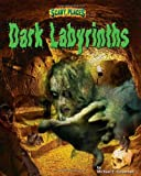Dark Labyrinths (Scary Places)