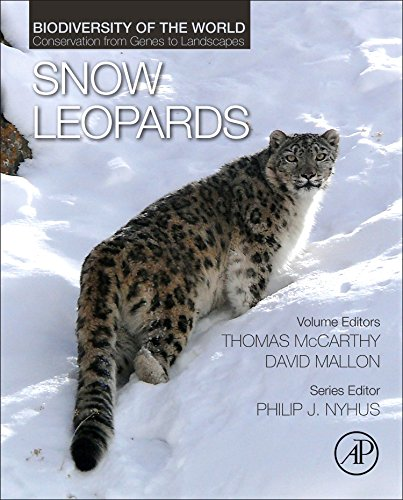 conservation of the snow leopard 2 essay 2) collected snow leopard scats for noninvasive genetics surveys (nsg) in  the  following is a summary of specific activities undertaken along with the.