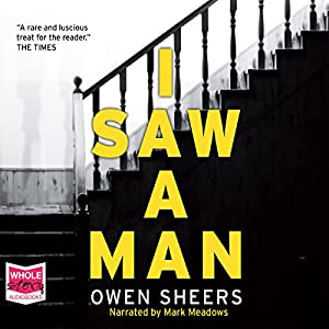 I Saw a Man Audiobook