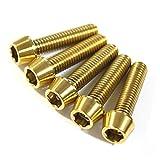バイクや自転車の軽量化やドレスアップパーツに 金色 チタンテーパーキャップボルトM6×25mm 5本入 MGT-TC0625G