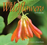 Wildflowers 2014 Mini Calendar