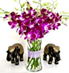 Fresh Flowers - Purple Dendrobium Orc...