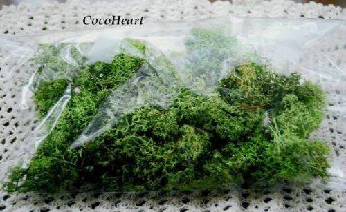 ~Coco Heart~ プリザーブド アイランドモス 30g