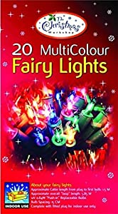 Indoor Fairy Light 20 Bulb - Multi-Coloured Bulbs from BML