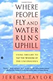 Where People Fly and Water Runs Uphill: Using Dreams to Tap the Wisdom of the Unconscious