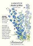 Shades of Blue Larkspur Seeds - .75 grams - Consolida