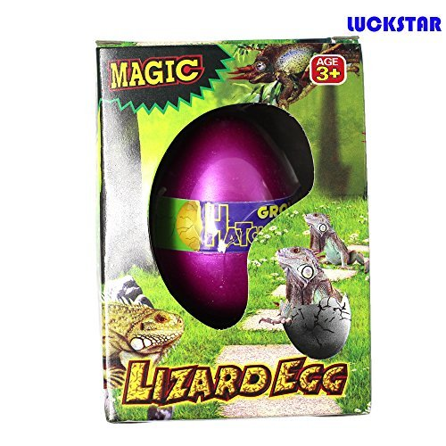 LUCKSTAR(TM) 1Pcs Growing Dinosaur Snake Penguin Chick Lizard Turtle Crocodile Egg Magic Hatch Grow Egg Growing Pet Novel Toy for Children-Automatic Hatch Out Egg and Grow by Putting into the water under 36 Degrees Celsius-Lizard - 1