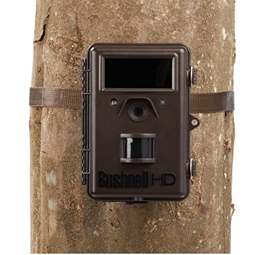 bushnell 8mp trophy cam hd hybrid trail camera with night vision brown. Black Bedroom Furniture Sets. Home Design Ideas