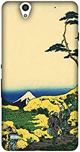 The Racoon Grip printed designer hard back mobile phone case cover for Sony Xperia C4. (Lower Megu)