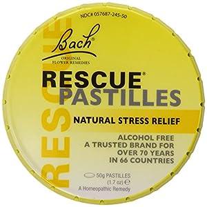 Nelsons Rescue Pastilles Supplement, 50 Gram