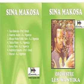 Sina Makosa