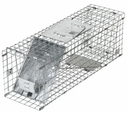 Havahart 1088 Collapsible One-Door Cage Trap for Rabbit, Skunk,  Mink, and Large Squirrels