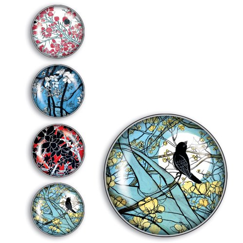iPop Rachel Salomon Blossoms and Birds Magnet Set and Big Click Duo,  4 Pack