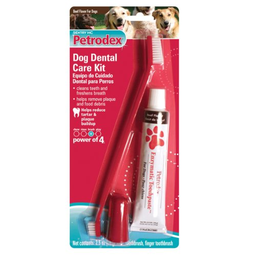 Petrodex Dental Kit For Dogs Beef Flavor