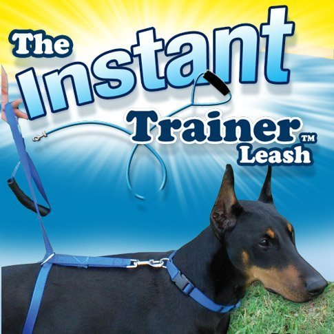 the-instant-trainer-leash-for-dogs-over-30-lbs-by-plymouth-direct