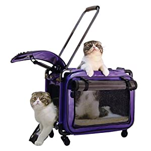 Tutto Medium Pet on Wheels Stroller, 20-Inch, Purple