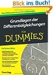 Grundlagen der Differenzialgleichunge...