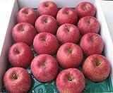 山形県東根市若木産 サンふじりんご/5kg/16個入り ランキングお取り寄せ