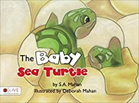 The Baby Sea Turtle