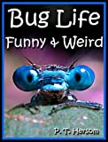 img - for Bug Life Funny & Weird Insect Animals - Learn with Amazing Photos and Fun Facts About Bugs and Spiders (Funny & Weird Animals Series Book 4) book / textbook / text book