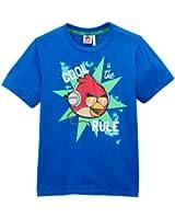 Angry birds - t-shirt - garçon